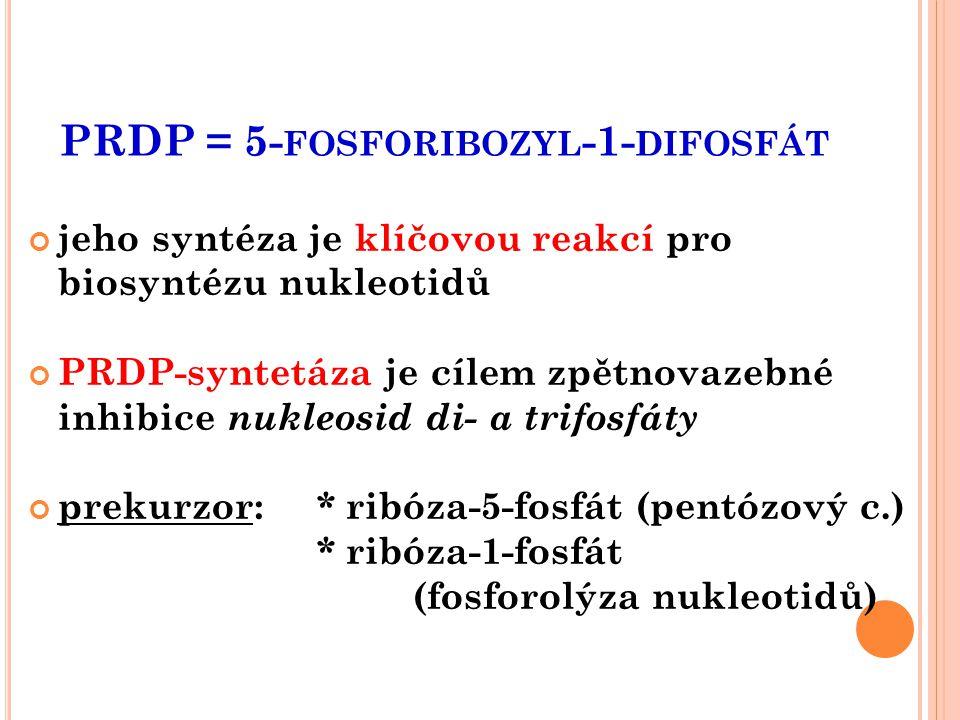 PRDP = 5- FOSFORIBOZYL -1- DIFOSFÁT jeho syntéza je klíčovou reakcí pro biosyntézu nukleotidů PRDP-syntetáza je cílem zpětnovazebné inhibice nukleosid