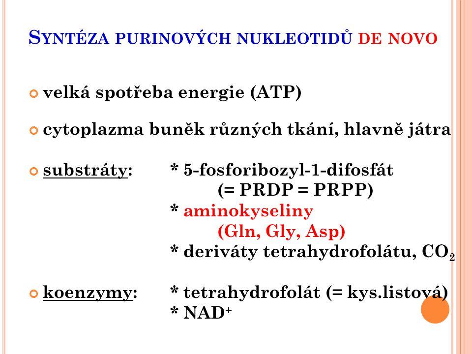 S YNTÉZA PURINOVÝCH NUKLEOTIDŮ DE NOVO velká spotřeba energie (ATP) cytoplazma buněk různých tkání, hlavně játra substráty:* 5-fosforibozyl-1-difosfát
