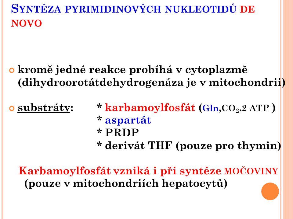 S YNTÉZA PYRIMIDINOVÝCH NUKLEOTIDŮ DE NOVO kromě jedné reakce probíhá v cytoplazmě (dihydroorotátdehydrogenáza je v mitochondrii) substráty:* karbamoy