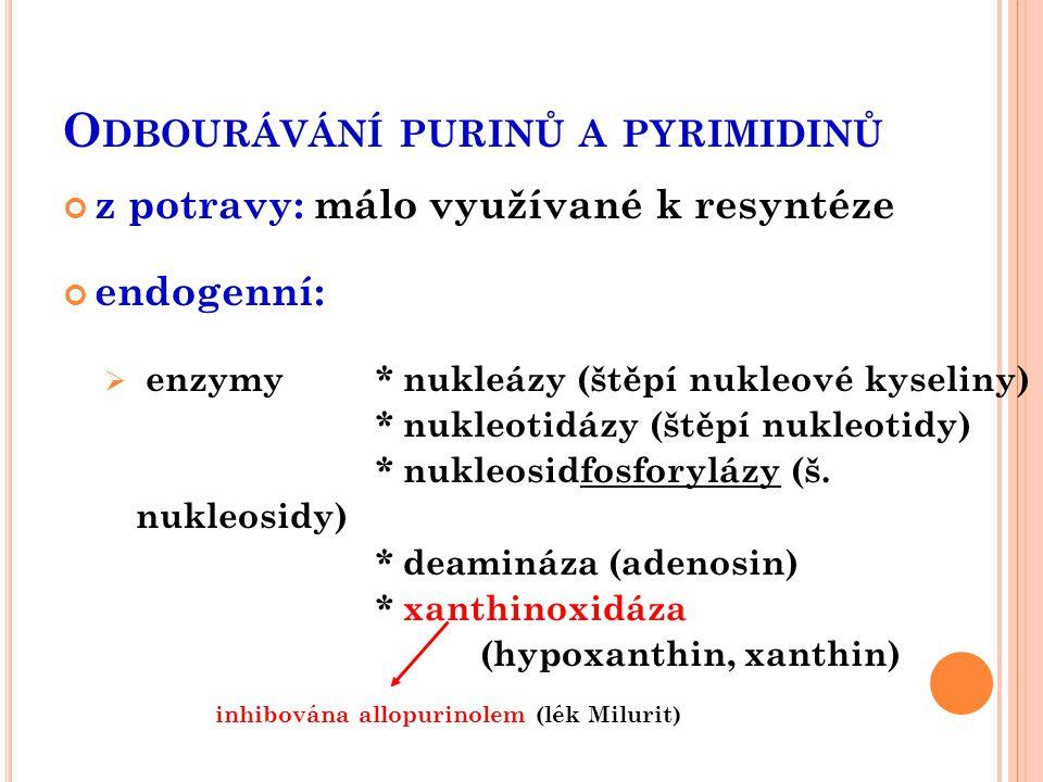 O DBOURÁVÁNÍ PURINŮ A PYRIMIDINŮ z potravy: málo využívané k resyntéze endogenní:  enzymy * nukleázy (štěpí nukleové kyseliny) * nukleotidázy (štěpí