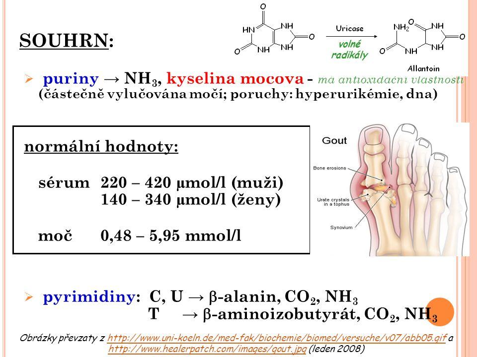 SOUHRN:  puriny → NH 3, kyselina močová - má antioxidační vlastnosti (částečně vylučována močí; poruchy: hyperurikémie, dna) normální hodnoty: sérum2