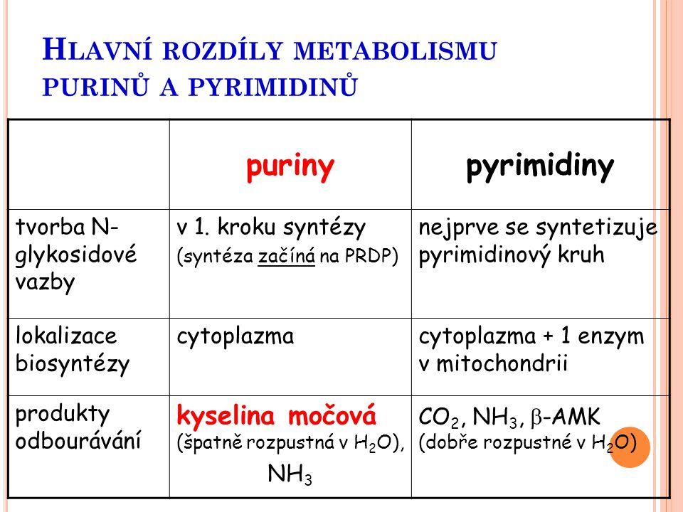 H LAVNÍ ROZDÍLY METABOLISMU PURINŮ A PYRIMIDINŮ purinypyrimidiny tvorba N- glykosidové vazby v 1. kroku syntézy (syntéza začíná na PRDP) nejprve se sy