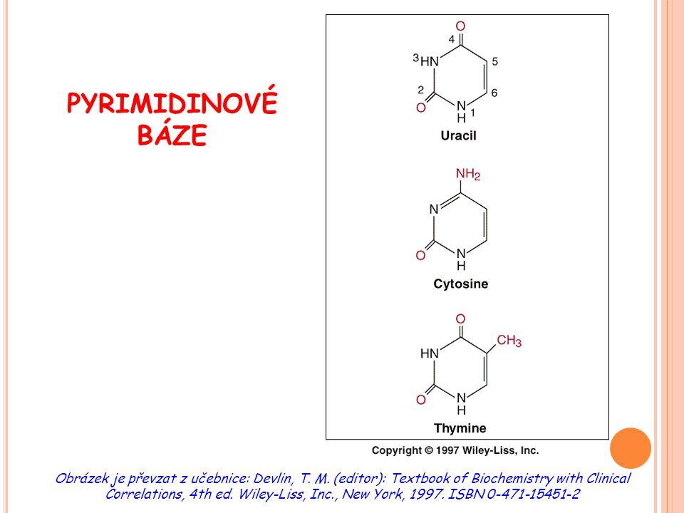 H LAVNÍ ROZDÍLY METABOLISMU PURINŮ A PYRIMIDINŮ purinypyrimidiny tvorba N- glykosidové vazby v 1.