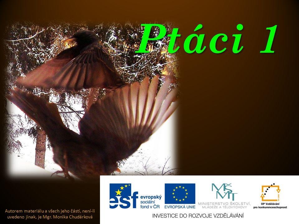 Ptáci 1 Autorem materiálu a všech jeho částí, není-li uvedeno jinak, je Mgr. Monika Chudárková