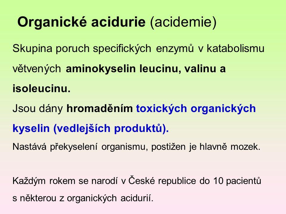 Organické acidurie (acidemie) Skupina poruch specifických enzymů v katabolismu větvených aminokyselin leucinu, valinu a isoleucinu. Jsou dány hromaděn