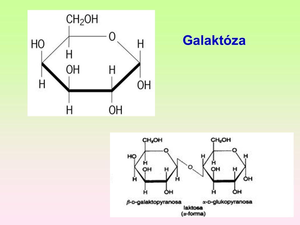 Galaktóza
