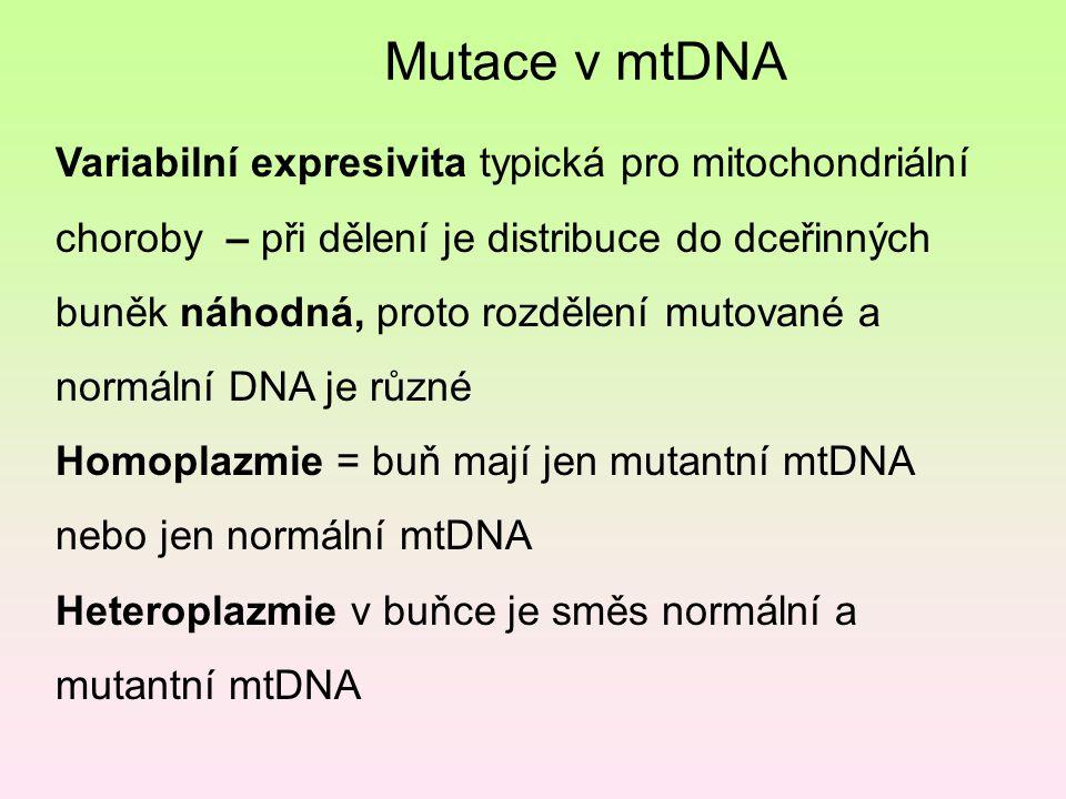 Variabilní expresivita typická pro mitochondriální choroby – při dělení je distribuce do dceřinných buněk náhodná, proto rozdělení mutované a normální