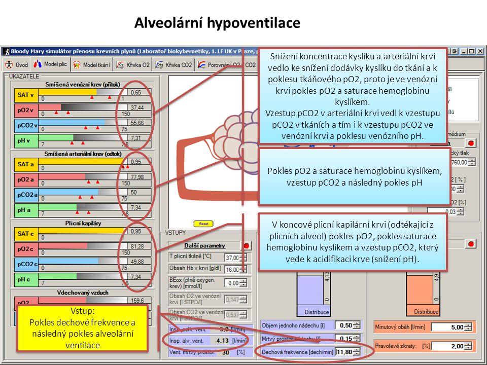Anémie Vstup: Anémie, koncentrace hemoglobinu snížena Vstup: Anémie, koncentrace hemoglobinu snížena Koncentrace krevních plynů v koncové plicní kapilární krvi (odtékající z plicních alveol) nezměněny, pH nezměněno Koncentrace krevních plynů a pH v arteriální krvi prakticky nezměněna (pouze mírný pokles pO2 díky 2% pravolevých zkratů a poklesu pO2 ve smíšené venózní krvi) Snížení dodávky kyslíku do tkání vedlo k poklesu tkáňového pO2, proto je ve venózní krvi pokles pO2 a saturace hemoglobinu kyslíkem.