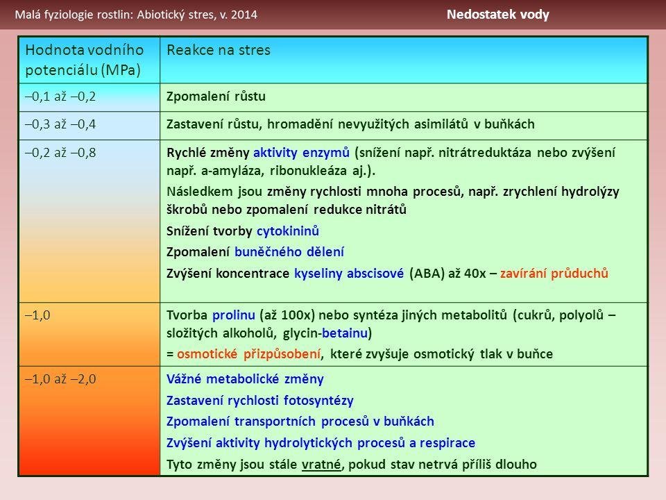 Hodnota vodního potenciálu (MPa) Reakce na stres –0,1 až –0,2Zpomalení růstu –0,3 až –0,4Zastavení růstu, hromadění nevyužitých asimilátů v buňkách –0,2 až –0,8Rychlé změny aktivity enzymů (snížení např.