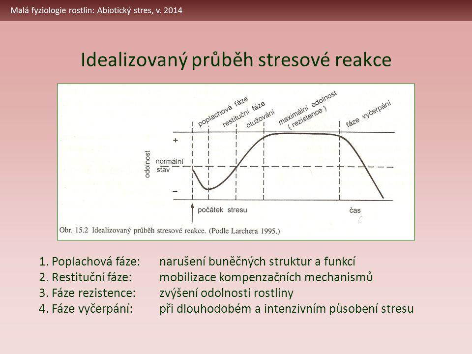 Idealizovaný průběh stresové reakce 1. Poplachová fáze:narušení buněčných struktur a funkcí 2. Restituční fáze:mobilizace kompenzačních mechanismů 3.
