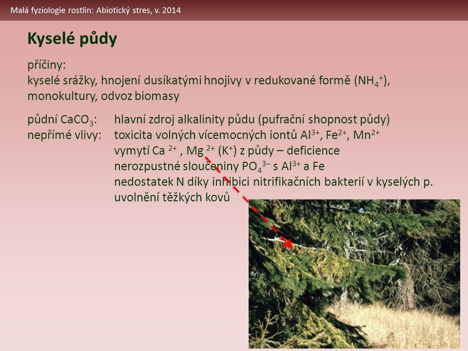 Kyselé půdy příčiny: kyselé srážky, hnojení dusíkatými hnojivy v redukované formě (NH 4 + ), monokultury, odvoz biomasy půdní CaCO 3 :hlavní zdroj alkalinity půdu (pufrační shopnost půdy) nepřímé vlivy:toxicita volných vícemocných iontů Al 3+, Fe 2+, Mn 2+ vymytí Ca 2+, Mg 2+ (K + ) z půdy – deficience nerozpustné sloučeniny PO 4 3– s Al 3+ a Fe nedostatek N díky inhibici nitrifikačních bakterií v kyselých p.