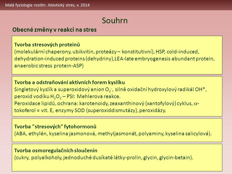Obecné změny v reakci na stres Tvorba stresových proteinů (molekulární chaperony, ubikvitin, proteázy – konstitutivní), HSP, cold-induced, dehydration