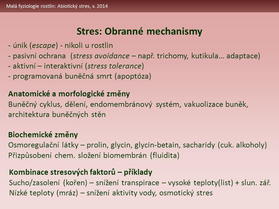 Anatomické a morfologické změny Buněčný cyklus, dělení, endomembránový systém, vakuolizace buněk, architektura buněčných stěn Biochemické změny Osmoregulační látky – prolin, glycin, glycin-betain, sacharidy (cuk.