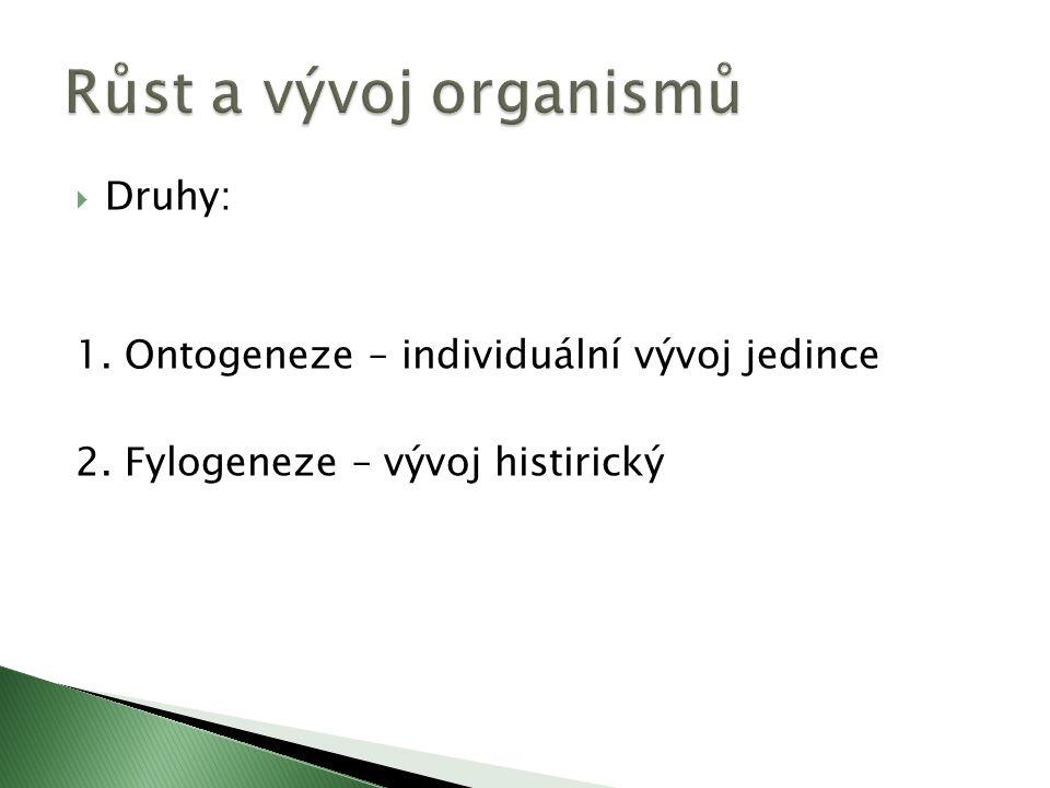  Druhy: 1. Ontogeneze – individuální vývoj jedince 2. Fylogeneze – vývoj histirický
