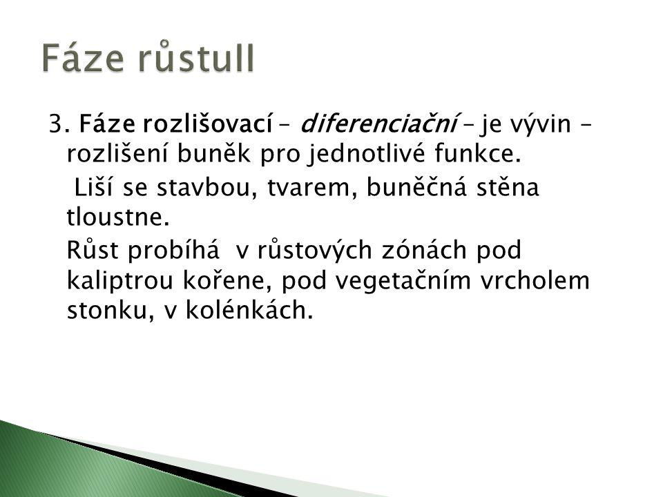 3. Fáze rozlišovací – diferenciační – je vývin – rozlišení buněk pro jednotlivé funkce.