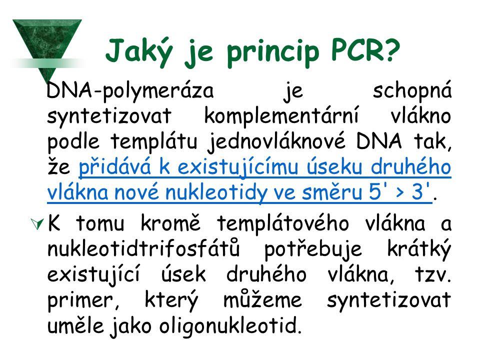 Jaký je princip PCR? DNA-polymeráza je schopná syntetizovat komplementární vlákno podle templátu jednovláknové DNA tak, že přidává k existujícímu úsek