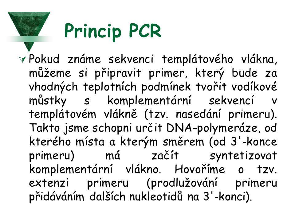 Princip PCR  Pokud známe sekvenci templátového vlákna, můžeme si připravit primer, který bude za vhodných teplotních podmínek tvořit vodíkové můstky s komplementární sekvencí v templátovém vlákně (tzv.