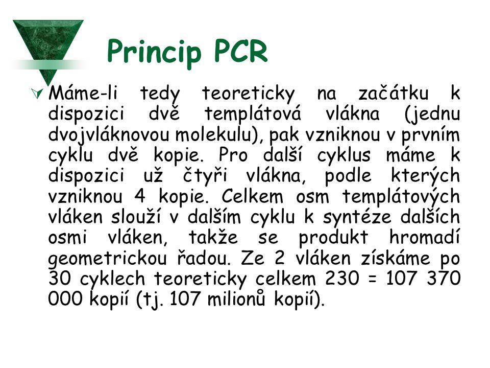 Princip PCR  Máme-li tedy teoreticky na začátku k dispozici dvě templátová vlákna (jednu dvojvláknovou molekulu), pak vzniknou v prvním cyklu dvě kop