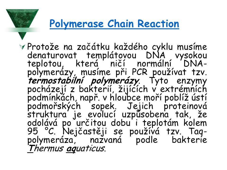 Polymerase Chain Reaction  Protože na začátku každého cyklu musíme denaturovat templátovou DNA vysokou teplotou, která ničí normální DNA- polymerázy, musíme při PCR používat tzv.