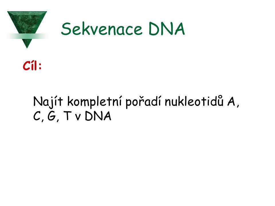 Sekvenace DNA Cíl: Najít kompletní pořadí nukleotidů A, C, G, T v DNA