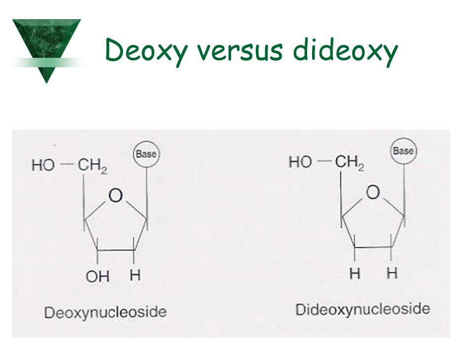 Deoxy versus dideoxy
