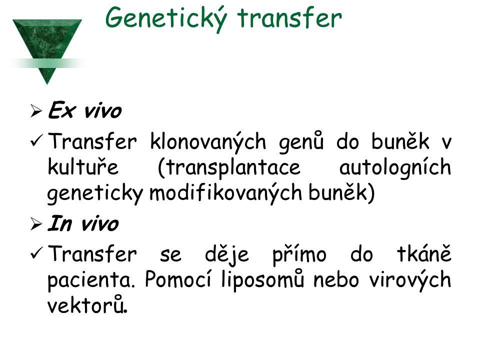 Genetický transfer  Ex vivo Transfer klonovaných genů do buněk v kultuře (transplantace autologních geneticky modifikovaných buněk)  In vivo Transfer se děje přímo do tkáně pacienta.