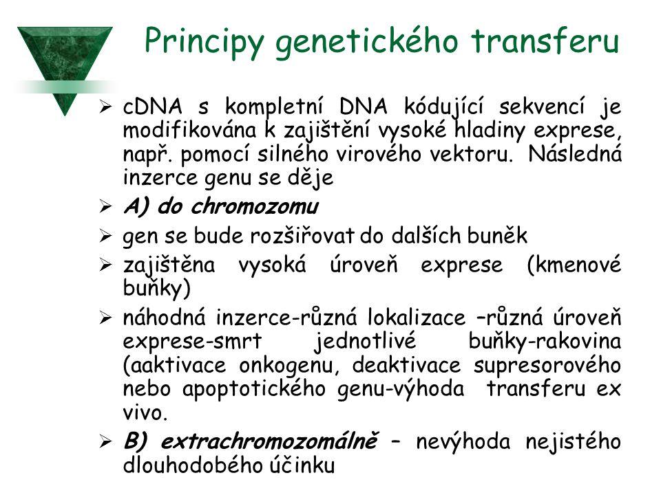 Principy genetického transferu  cDNA s kompletní DNA kódující sekvencí je modifikována k zajištění vysoké hladiny exprese, např. pomocí silného virov