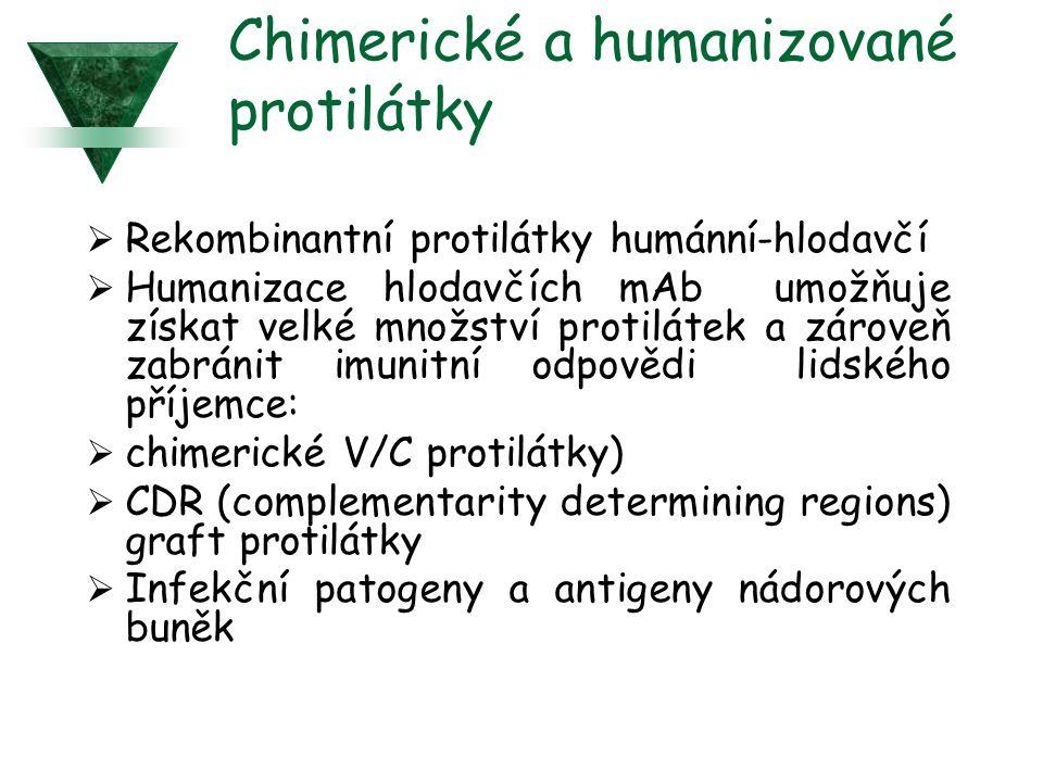 Chimerické a humanizované protilátky  Rekombinantní protilátky humánní-hlodavčí  Humanizace hlodavčích mAb umožňuje získat velké množství protilátek a zároveň zabránit imunitní odpovědi lidského příjemce:  chimerické V/C protilátky)  CDR (complementarity determining regions) graft protilátky  Infekční patogeny a antigeny nádorových buněk