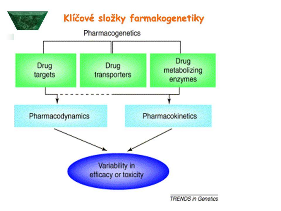 Klíčové složky farmakogenetiky
