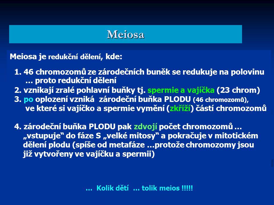 Meiosa je redukční dělení, kde: 1.
