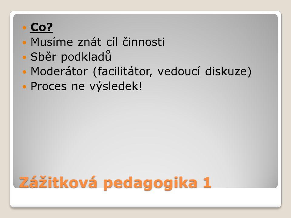 Zážitková pedagogika 1 Co? Musíme znát cíl činnosti Sběr podkladů Moderátor (facilitátor, vedoucí diskuze) Proces ne výsledek!
