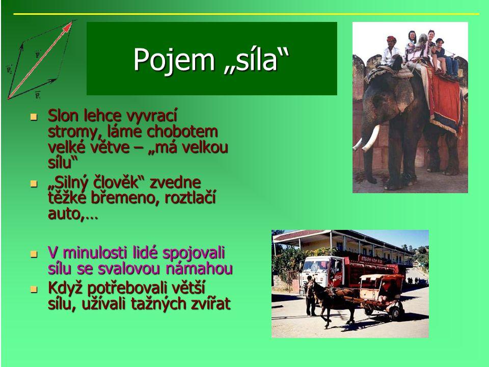 """Pojem """"síla"""" Slon lehce vyvrací stromy, láme chobotem velké větve – """"má velkou sílu"""" Slon lehce vyvrací stromy, láme chobotem velké větve – """"má velkou"""