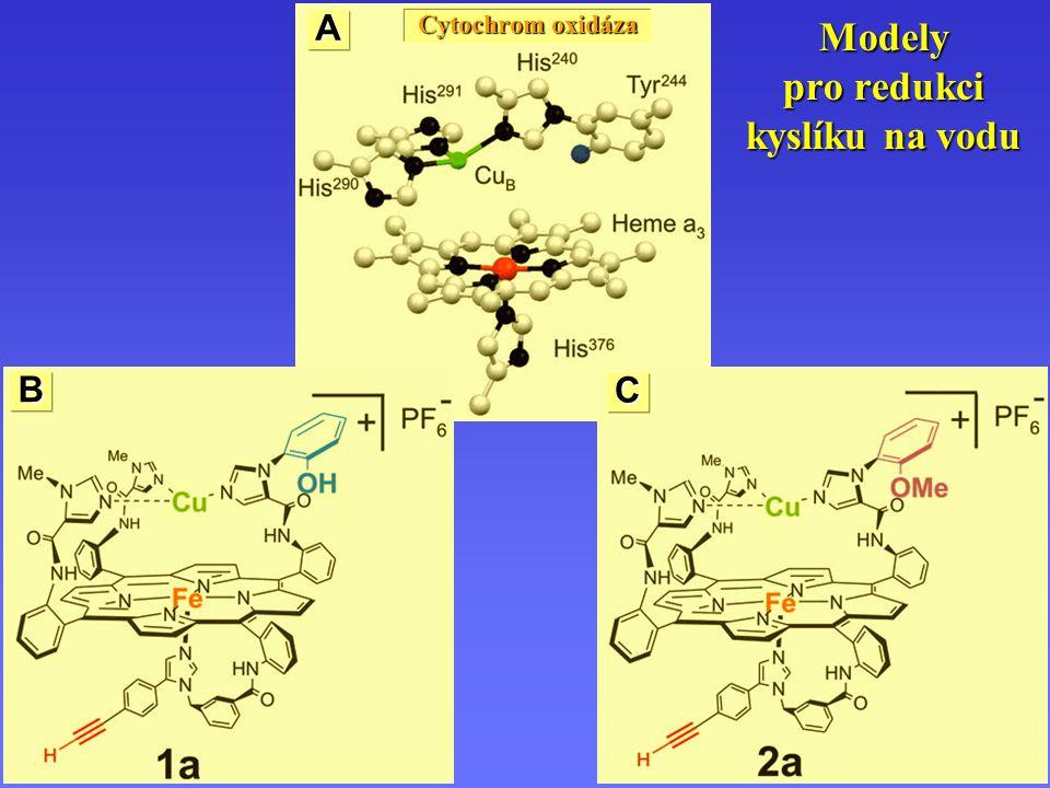 Modely pro redukci kyslíku na vodu A B C Cytochrom oxidáza