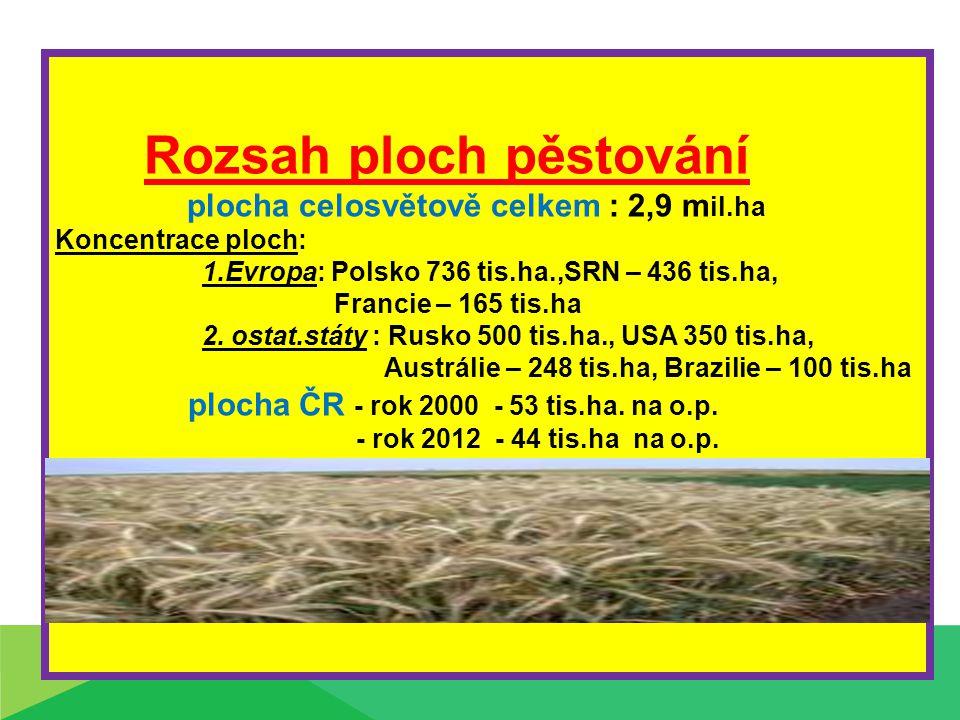 Rozsah ploch pěstování plocha celosvětově celkem : 2,9 m il.ha Koncentrace ploch: 1.Evropa: Polsko 736 tis.ha.,SRN – 436 tis.ha, Francie – 165 tis.ha