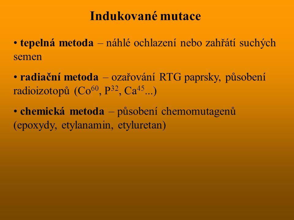 Indukované mutace tepelná metoda – náhlé ochlazení nebo zahřátí suchých semen radiační metoda – ozařování RTG paprsky, působení radioizotopů (Co 60, P