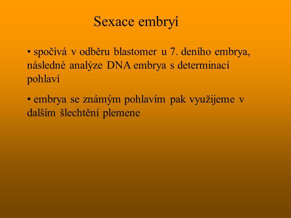 Sexace embryí spočívá v odběru blastomer u 7. deního embrya, následné analýze DNA embrya s determinací pohlaví embrya se známým pohlavím pak využijeme