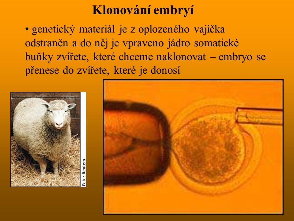 Klonování embryí genetický materiál je z oplozeného vajíčka odstraněn a do něj je vpraveno jádro somatické buňky zvířete, které chceme naklonovat – em