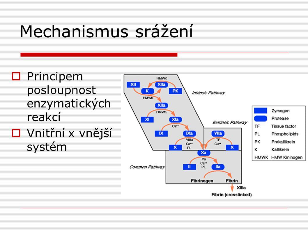 Mechanismus srážení  Principem posloupnost enzymatických reakcí  Vnitřní x vnější systém