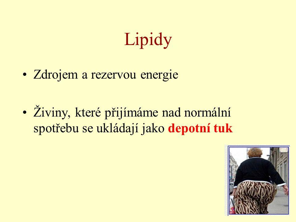 Lipidy Zdrojem a rezervou energie Živiny, které přijímáme nad normální spotřebu se ukládají jako depotní tuk