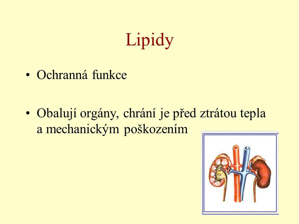 Lipidy Ochranná funkce Obalují orgány, chrání je před ztrátou tepla a mechanickým poškozením