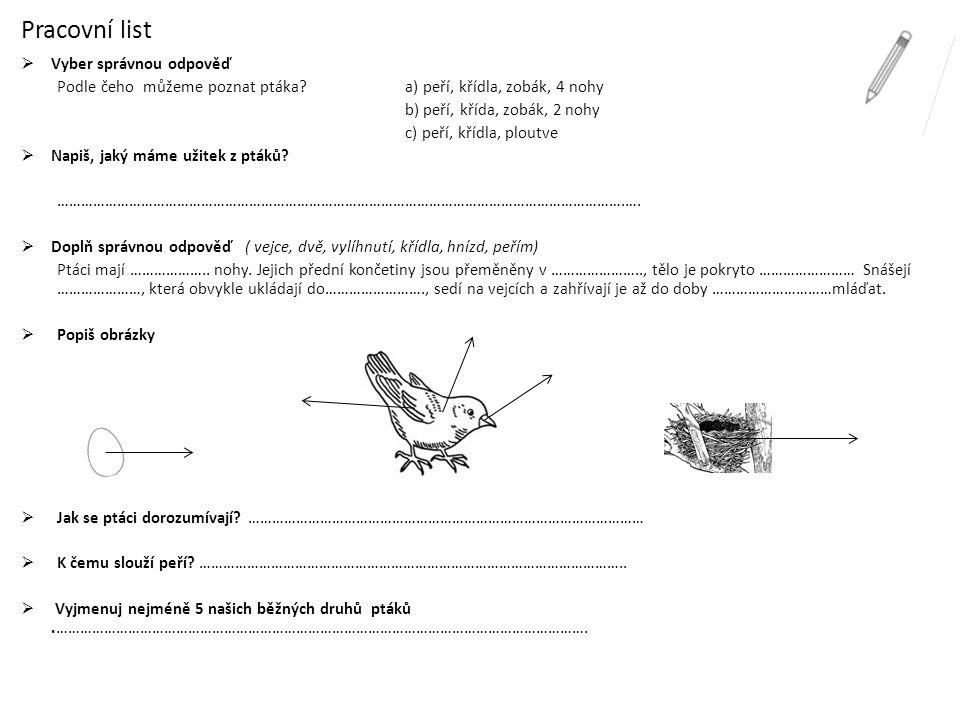 kos černý výr velký sojka obecná vrabec domácí vlaštovka obecná káně lesní