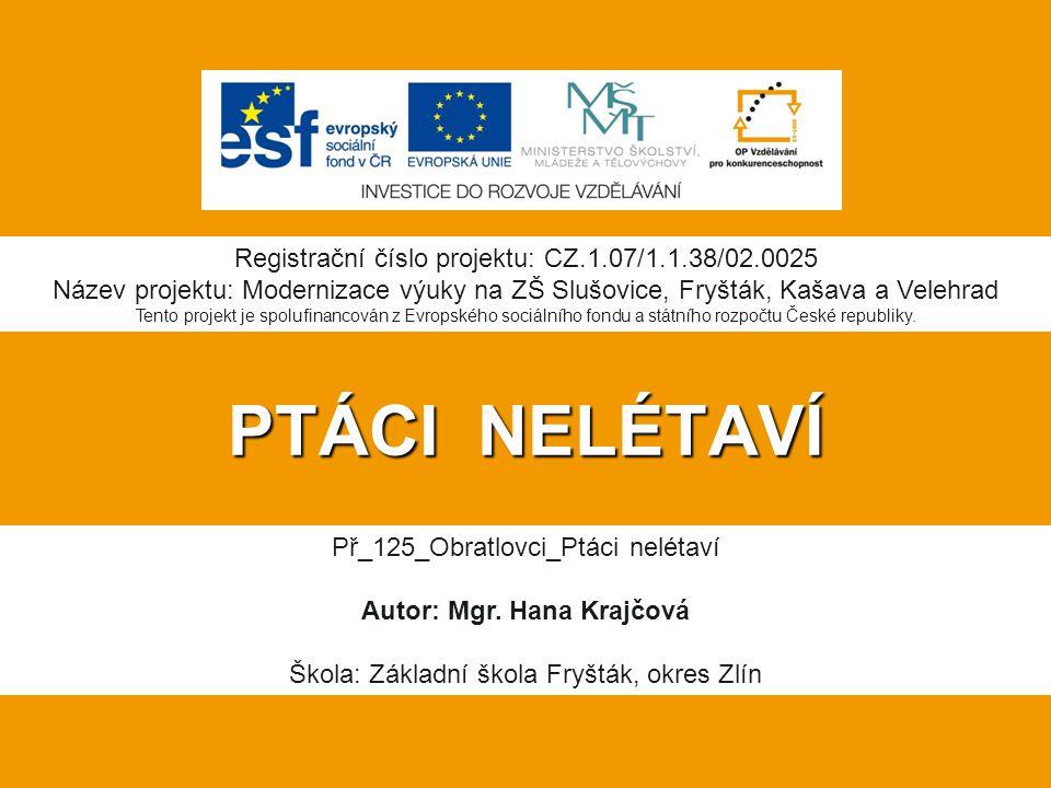 PTÁCI NELÉTAVÍ Registrační číslo projektu: CZ.1.07/1.1.38/02.0025 Název projektu: Modernizace výuky na ZŠ Slušovice, Fryšták, Kašava a Velehrad Tento projekt je spolufinancován z Evropského sociálního fondu a státního rozpočtu České republiky.