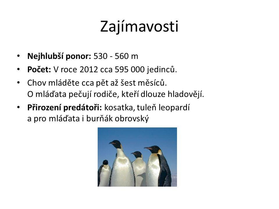 Odkazy http://www.divocina.estranky.cz/clanky/kralovst vi-ledu/tucnak-cisarsky.html http://www.penguinsworld.cz/clanky/tucnak- cisarsky.html http://zivazeme.cz/atlas-ptaku/tucnak-cisarsky