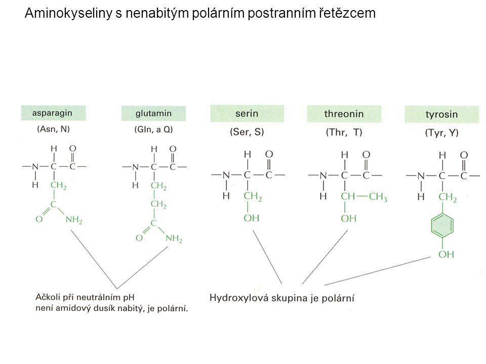 Aminokyseliny s nepolárním postranním řetězcem