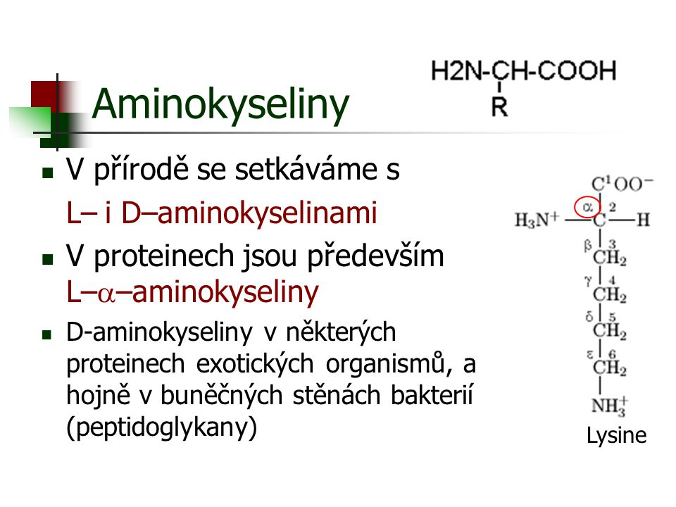 Aminokyseliny V přírodě se setkáváme s L–  i D–aminokyselinami V proteinech jsou především L–  –aminokyseliny D-aminokyseliny v některých proteinech