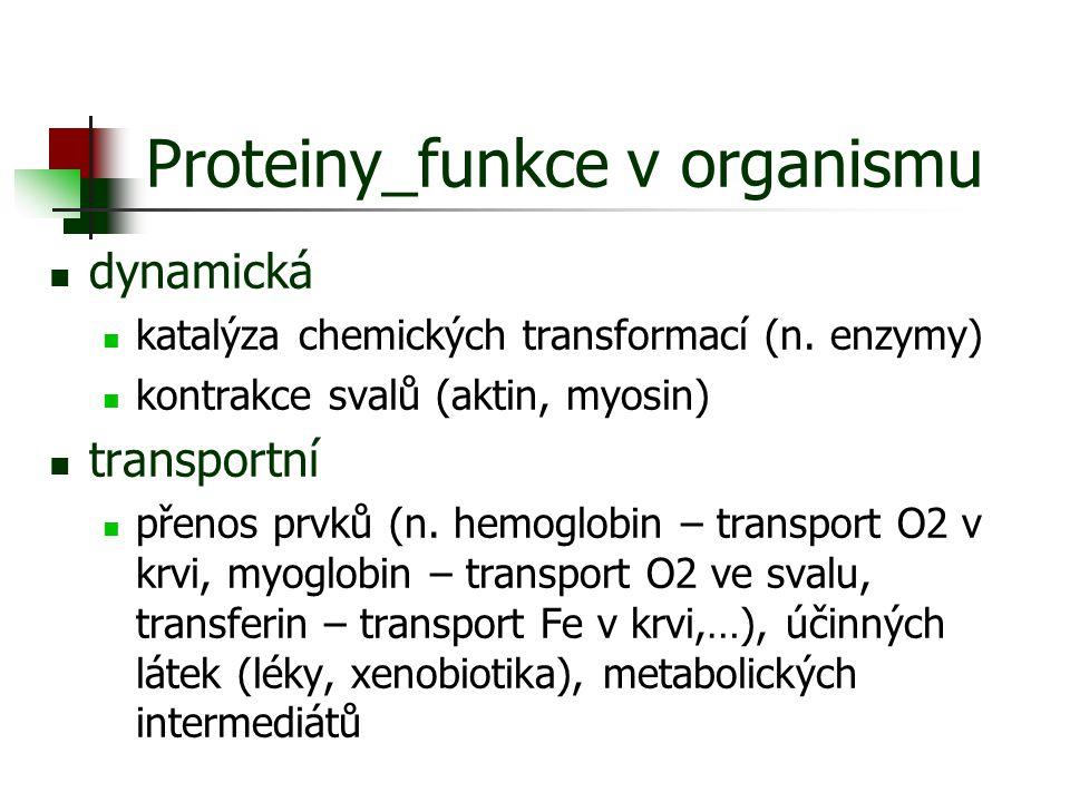 Proteiny_funkce v organismu dynamická katalýza chemických transformací (n. enzymy) kontrakce svalů (aktin, myosin) transportní přenos prvků (n. hemogl