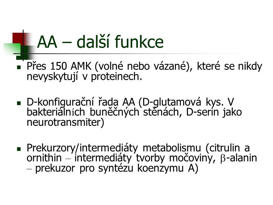 AA – další funkce Přes 150 AMK (volné nebo vázané), které se nikdy nevyskytují v proteinech. D-konfigurační řada AA (D-glutamová kys. V bakteriáln í c