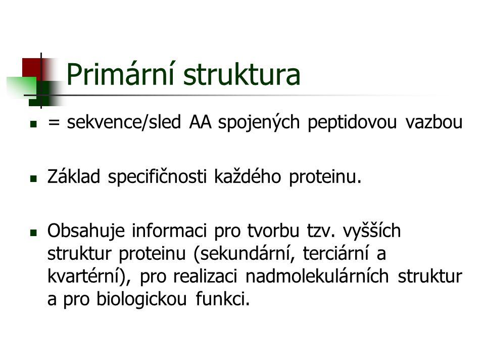 Primární struktura = sekvence/sled AA spojených peptidovou vazbou Základ specifičnosti každého proteinu. Obsahuje informaci pro tvorbu tzv. vyšších st