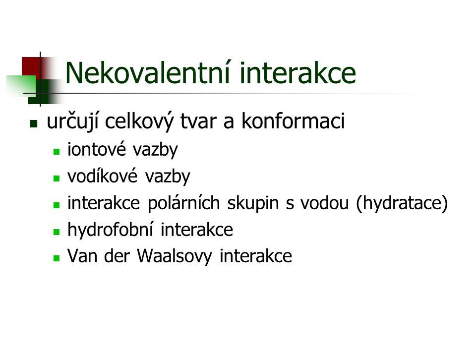 Nekovalentní interakce určují celkový tvar a konformaci iontové vazby vodíkové vazby interakce polárních skupin s vodou (hydratace) hydrofobní interak