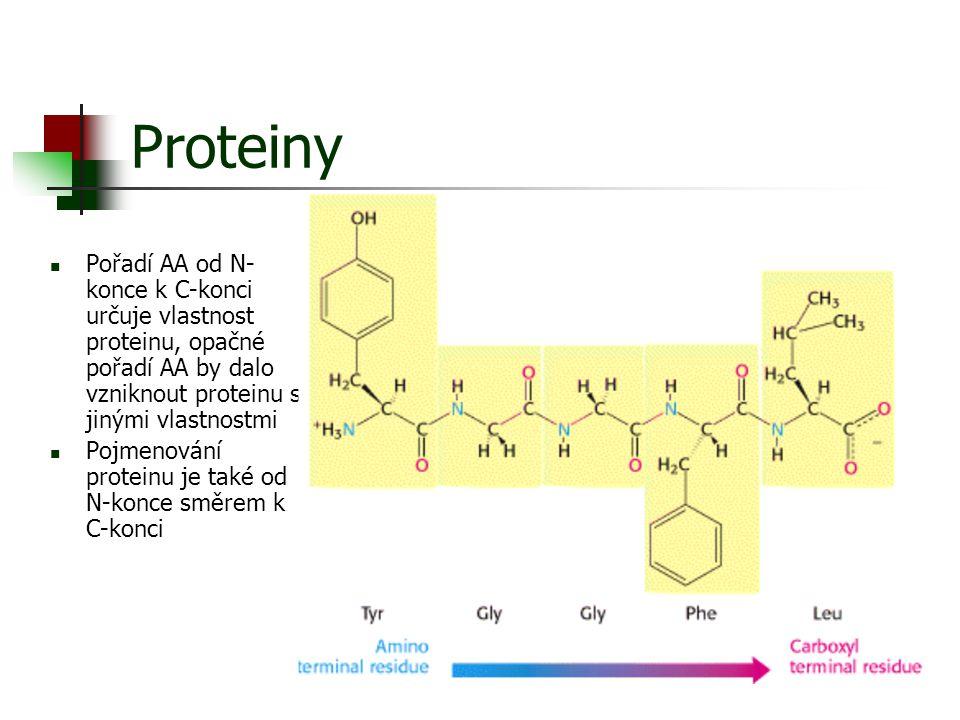 Proteiny Pořadí AA od N- konce k C-konci určuje vlastnost proteinu, opačné pořadí AA by dalo vzniknout proteinu s jinými vlastnostmi Pojmenování prote